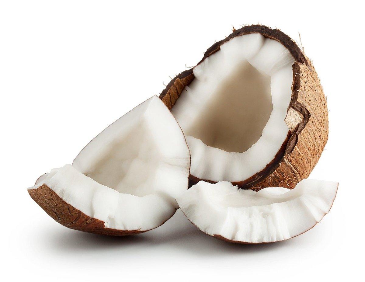 Кокосов орев
